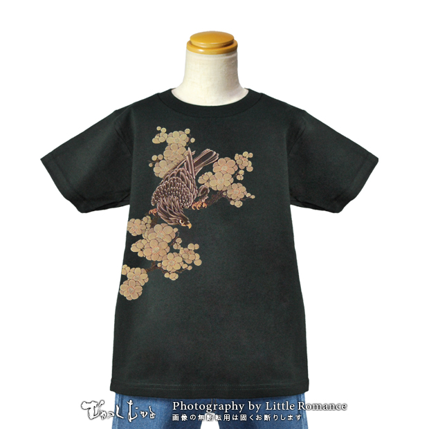 キッズ和柄Tシャツ,鷹梅